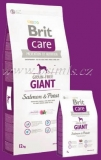 Brit Care Dog Grain-free Giant Salmon & Potato 12kg (+ 2kg ZDARMA)