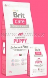 Brit Care Dog Grain-free Puppy Salmon & Potato 12kg (+ 2kg ZDARMA)